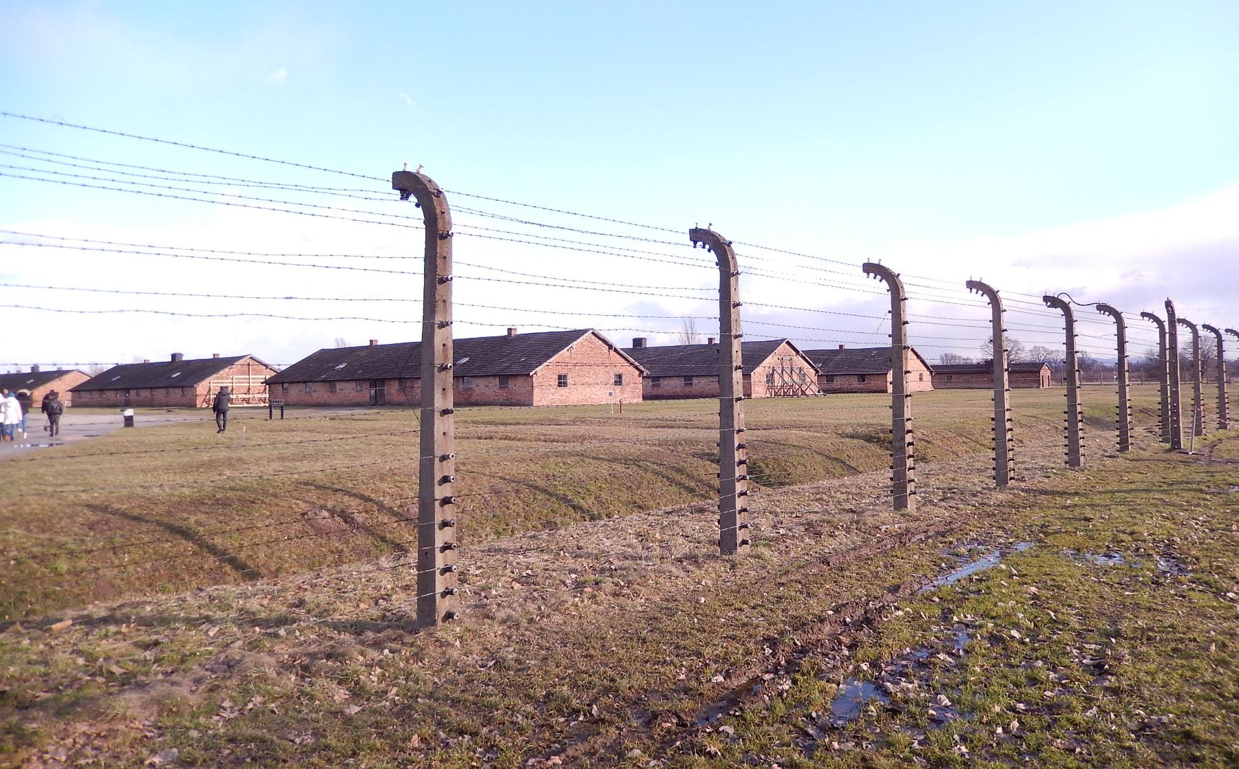Immensité  Birkenau